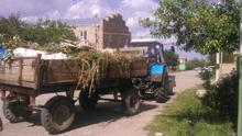 Համապետական շաբաթօրյակը Գեղարքունիքի մարզի համայնքներում  ընթացավ կազմակերպված