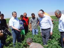 ՀՀ գյուղատնտեսության նախարարի աշխատանքային  այցը Գեղարքունիքի մարզ